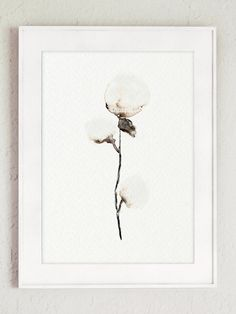 Cotton painting, cotton bolls, natural cotton art print from my original watercolor painting, cotton yarn