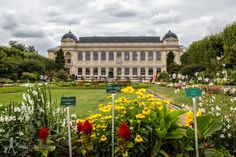 Cross over to the Left Bank and discover the beautiful Jardin des Plantes! (And the National Museum of Natural History too!)