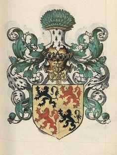 Hainault, House of Avesnes — from the 16th c. French manuscript, Grand armorial colorié, dont les blasons sont rangés sous les rubriques suivantes. Arms by Alexandre Leblancq.