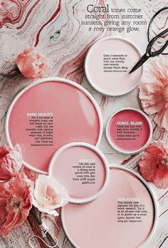 Feng Shui And Living Coral- The Pantone Color Of 2019 With A Higher Purpose Coral Paint Colors, Wall Colors, House Colors, Peach Colors, Dark Peach Color, Coral Colour, Teal Paint, Blue Peach, Tropical Colors