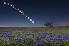 Time Lapse Photo: Blood Moon Shines Over Texas http://nbcnews.to/P9OuAu pic.twitter.com/mtu6oTu0Zh