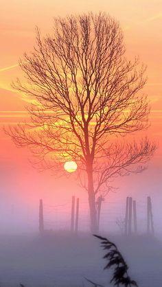Sunset And Mist ombre Beautiful World, Beautiful Places, Foto Nature, Landscape Photography, Nature Photography, Cool Pictures, Beautiful Pictures, Beautiful Sunrise, Jolie Photo