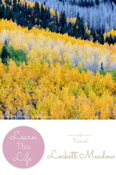 {tips for travelling to Lockett Meadow}