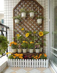 对的对的,阳台要有太阳花!