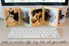Bragging Rights: Make An Accordion-Style Brag Book With Your Photos (via The Kicksend Blog)