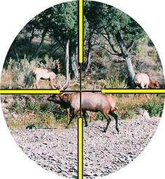 How to Determine the Distance of Long Range Shots