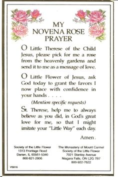 st therese novena rose