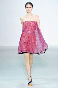 Dior PFW 2013