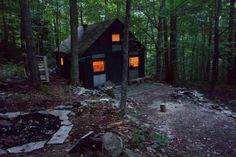 Catskills Mountain Cabin, Walton, New York Completely rebuilt by artist Mike Hein