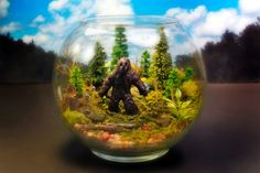 Star Wars Characters, Baby Dinosaurs, and Bigfoot Terrariums Liven Up Any Room : Discovery Channel