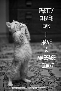 Pretty please can I have a massage today?  | Come to Fulcher's Therapeutic Massage in Imlay City, MI and Lapeer, MI for all of your massage needs!  Call (810) 724-0996 or (810) 664-8852 respectively for more information or visit our website lapeermassage.com!
