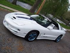 1999 trans am ws6 30th anniversary - Google Search