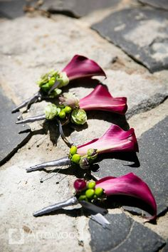 Boutonnieres: Mini Calla Lilly with fiddel head stick. If possible on groom add berry and/or small greenery. Mod Wedding, Wedding Events, Wedding Reception, Reception Ideas, Wedding Ideas, Wedding Stuff, Wedding Colors, Wedding Flowers, Groomsmen Boutonniere