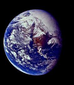 La historia de la vida data desde la formación de nuestro planeta