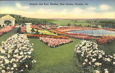 Pergola And Pool, Hershey Rose Garden Pennsylvania