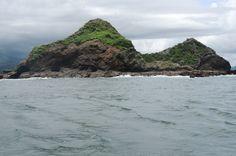ballena aventura tour whale island   - Costa Rica