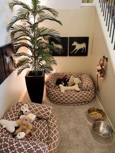 Awesome dog area @Kitti van Ramshorst van Ramshorst van Ramshorst van Ramshorst
