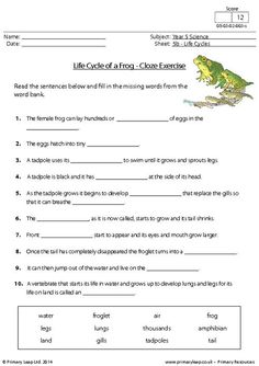 PrimaryLeap.co.uk - Life Cycle of a Frog - Cloze Exercise Worksheet