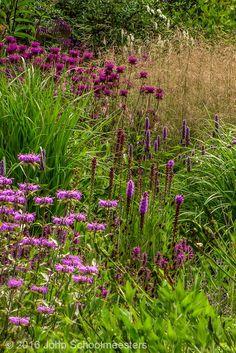 Gardendesign | Tuinontwerp | Liatris, Agastache, Monarda's and Deschampsia. Planting Design by John Schoolmeesters