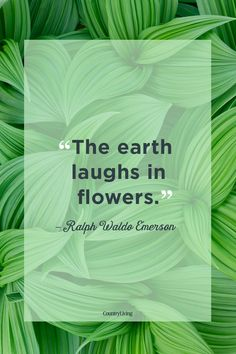quotes about earth spirituality - Google Search Nature Quotes, How Beautiful, Amazing Nature, The Great Outdoors, Spirituality, Inspirational Quotes, Earth, Entertaining, Sayings