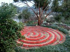 You have to adore this red flower wall in this striking labyrinth.