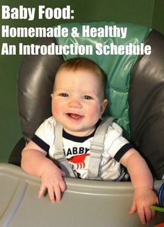 Baby Food: Homemade & Healthy!  An introduction schedule including starter foods, purees, table food recipes, and feeding gear