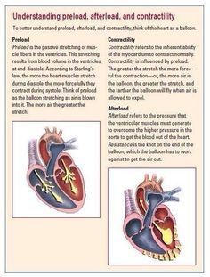 Preload contractility and afterload