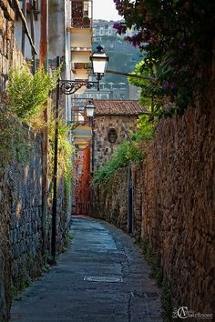 Streets of Sorrento, Italy by elsa