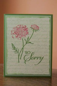 Stampin' Up So Sorry French Script with Field Flowers 2