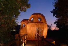 At nighttime, the cabins come to life — just like real owls.