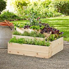 3 Oversized Planters You Can Make From Upcycled Items | HGTV Cheap Raised Garden Beds, Plants For Raised Beds, Raised Planter Beds, Raised Bed Garden Design, Raised Patio, Raised Gardens, Williams Sonoma, Cedar Garden, Herb Garden