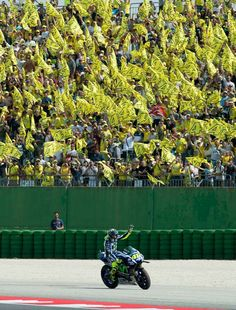 Vale Motorcycle Racers, Racing Motorcycles, Beast Mode, Motogp, Grand Prix, Vale Rossi, Gp Moto, Valentino Rossi 46, Vr46