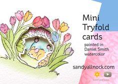 SandyAllnock Tryfold tulips