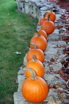 pumpkin parade / david fuller photo