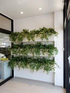 壁棚壁面緑化