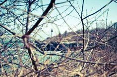 Fort Williams through the bushes. Cape Elizabeth, Maine.
