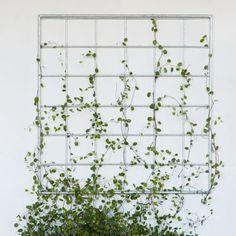 Zinc Lattice Wall Panel   [L]