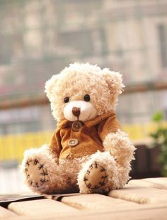Super Cute Teddy Bear with Handsome Clothes Plush Toy