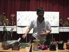 Curso básico de cultivo de Orquídeas - Parte 2
