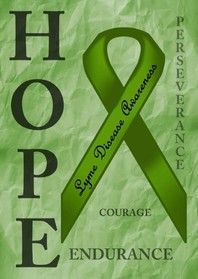 The first ever Lyme Disease Awareness Garden Flags!  Order yours today!