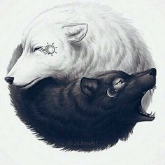 Twin Wolves…(Good/Bad):