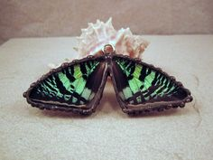Real Butterfly Pendant by DebrasDivineDesigns