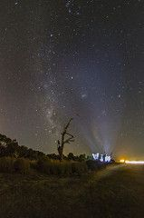 astrophotography night nightscape tree forresthwy cones peleng fisheye canon 7d water perth western australia wa widefield clear space nature x5 x6