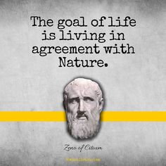 If you're interested in the background of the founder of Stoicism check out the link my bio for details on Zeno of Citium! School Of Philosophy, The Stoics, Motivational Quotes, Inspirational Quotes, Motivate Yourself, Life Goals, Wisdom Quotes, Great Quotes, Cool Things To Make