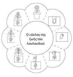 mikapanteleon-PawakomastoNhpiagwgeio: Καλοκαίρι στο Νηπιαγωγείο 2018 (1) Plant Science, Science And Nature, Science For Kids, Science Projects, School Projects, Teaching Kids, Teaching Resources, Outdoor Education, Science Worksheets