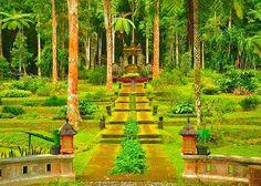 Botanic Garden in Ubud, Bali, Indonesia