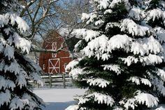 Barns of Barrington