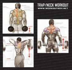 Trap Neck Workout - Healthy Fitness Exercises Gym Low Body