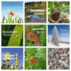 NaturExplorers studies include printable notebooking pages!