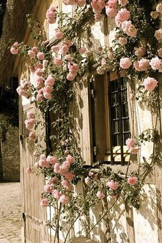 Cottage with Pink Roses Growing around the window.